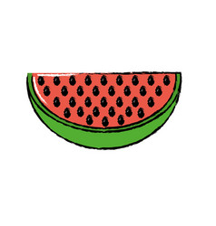 Delicios slice watermelon fruit food vector
