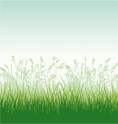Grassy meadow vector image