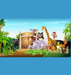 many wild animals at park vector image