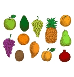 Tropical and exotic fruits isolated icons vector