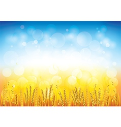 wheat field background vector image