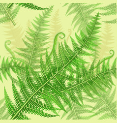 seamless pattern with green fern leaves vector image vector image