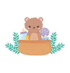 Bashower teddy bear rattle pacifier in basket vector