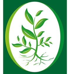 Green plant background vector image