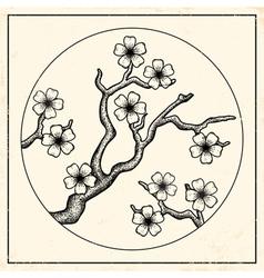 Sakura vintage black vector image