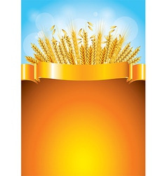 Wheat golden background vector