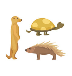 African animals turtle cartoon vector