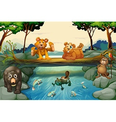 Bears and other animals in the forest vector