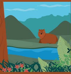 cute bear at forest vector image