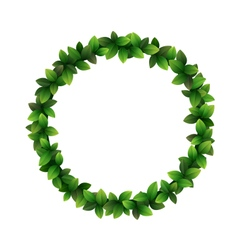 Green leaves circle frame isolated on white vector