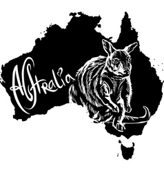 Wallaby on map of Australia vector