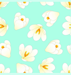 White crocus flower on green mint background vector