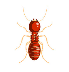 termite insect colorful cartoon character vector image vector image