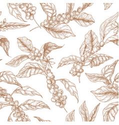 Elegant seamless pattern with coffea or coffee vector