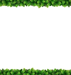 Green leaves frame isolated on white vector image
