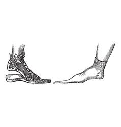 Sandal vintage engraving vector image