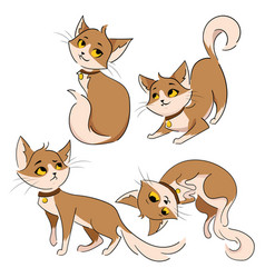 Set of cartoon cats collection of cute red cats vector