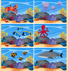 six underwater scenes with sea animals vector image
