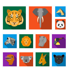 Wild animal flat icons in set collection for vector