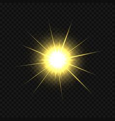 Golden star burst vector