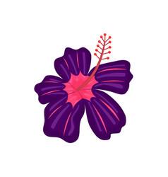 Floral botanical flower flat ornament vector