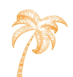 Hand-drawn palm tree isolated on white vector