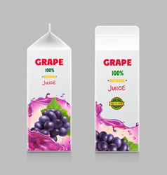 juice carton box 3d pack with grape branch vector image