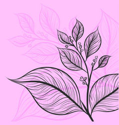 Leaf drawing art pattern on a pink color scene vector