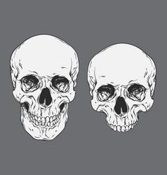 line art human skulls set isolated vector image