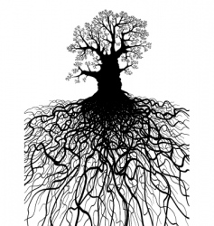 tree with roots vector image