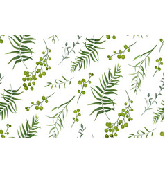 palm fern different tree foliage natural branches vector image
