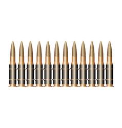 bullet belt vector image