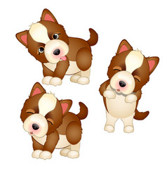 cute puppy isolated on white background pets vector image