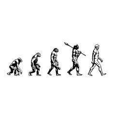 Evolution of man vector
