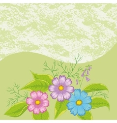 Floral Background Flowers Cosmos vector