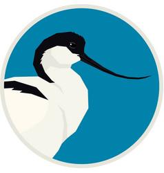 pied avocet bird round frame vector image