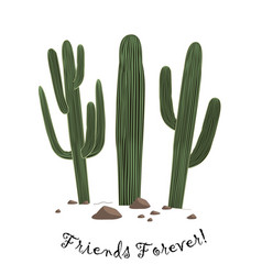 set three cute cartoon saguaro cactus vector image