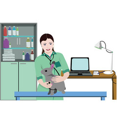 healthcare veterinary clinic template vector image