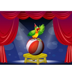 A colorful bird performing at the circus vector image vector image