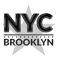 T shirt typography graphic New York city Brooklyn vector image vector image