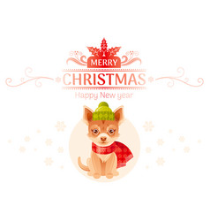 puppy chihuahua dog merry christmas happy new year vector image