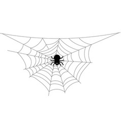 Black cartoon spider with web on blank background vector