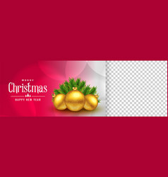 elegant christmas banner with image space vector image