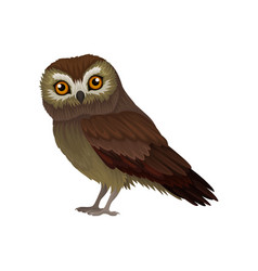 Flat icon of northern saw-whet owl small vector