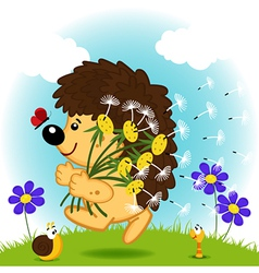 hedgehog with dandelion vector image