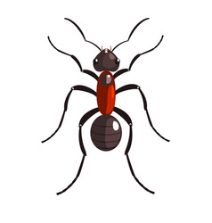 black ant insect colorful colorful cartoon vector image