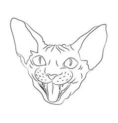 cat portrait lines vector image