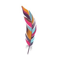Colored curved bright bird feather vector