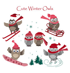 Cute winter owls collection vector