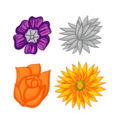Floral botanical flower ornament set vector